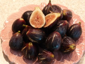 Dish of Figs