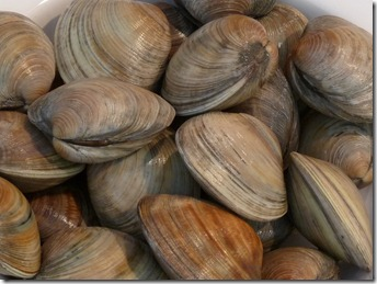 Clams Risotto02