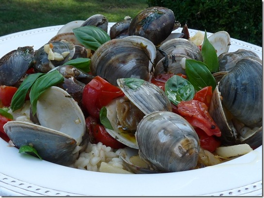 Clams Risotto16